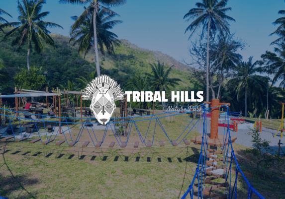 web-design-tribal-hills